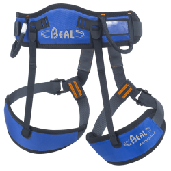 BEAL Aero Team IV